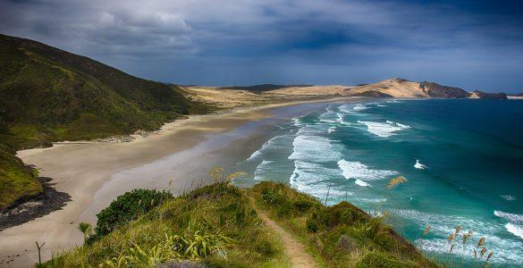 natuur nieuw-zeeland