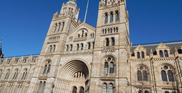 natural history museum londen